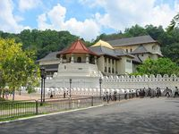3 nights Sri Lanka Tour - Deluxe Package