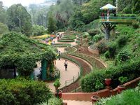 Weekend Getaway to Ooty - Budget
