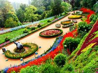 1N Bangalore 1N Mysore 2N Ooty South Package