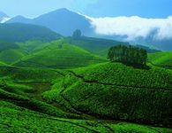 Enchanting Kerala - Luxury