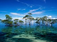 Magical Andaman - Luxury