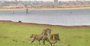 Kabini Weekend Package - Luxury