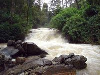 Coorg Homestay Package - Luxury