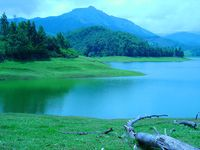 A Romantic Sojourn in Kerala - Standard Package
