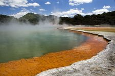 Coromandel And Rotorua 7 Days Package