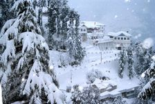 Blissful Shimla - Luxury