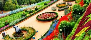 Colors of Mysore, Ooty & Kodaikanal 6 Days Package