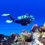 Scuba Diving and Sea Walk Ultimate Adventure Trip