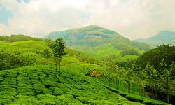 Experience God's Own Country