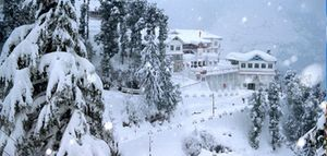 Magnificient Shimla 2 Nights Package