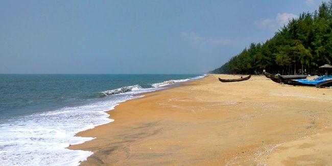 Southern Paradise - Premium