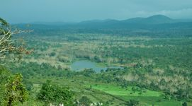 Wild Bandipur Tours - Deluxe