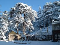 Shimla Manali and Delhi Package - Budget