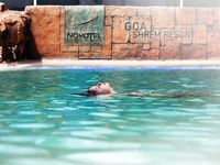 Enjoy in Novote hotel -North goa and Radisson Blu Resort Goa Cavelossim Beach
