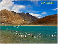 Journey to Srinagar via Ladakh Super Deluxe Package