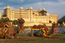 Golden Triangle Delight Tour Premium Package