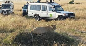 The Ultimate Kenya Safari
