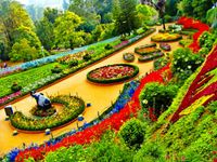 Mysore & Ooty with Kodaikanal Package - Budget
