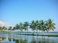 Memorable Kerala Package ( 16 June - 30 September ) - Luxury