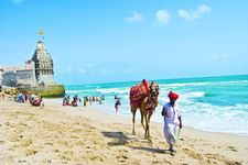 Explore Rich Heritage and Culture of Gujarat - Budget