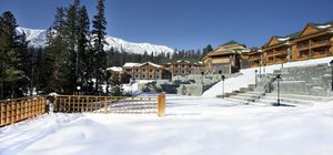 Gulmarg Luxury Package - Premium