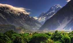 West Coast Wonder - New Zealand