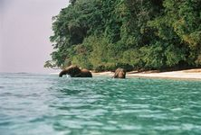 Memorable Andamans - Luxury