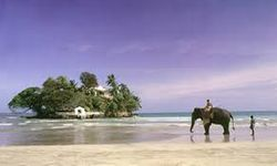 Srilanka The Green Hills 3 nights 4 days - Deluxe